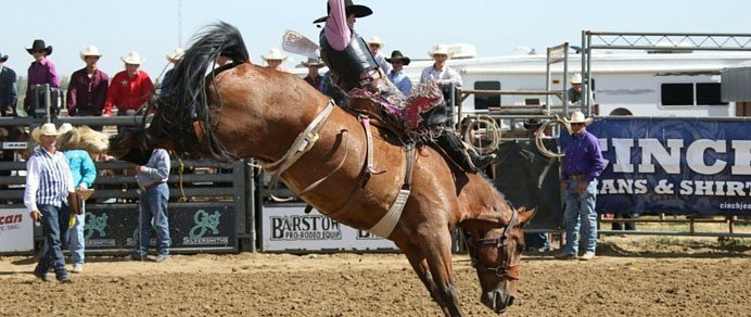 Students come from across the world to compete in the world's largest rodeo.
