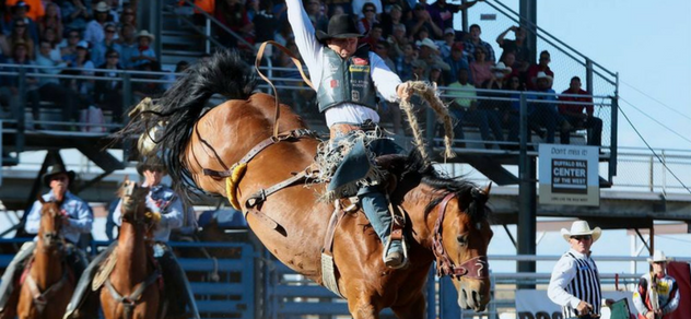"Jake Wright's winning ride on Frontier Rodeo's ""Short Stop"" at the 97th Cody Stampede Rodeo."
