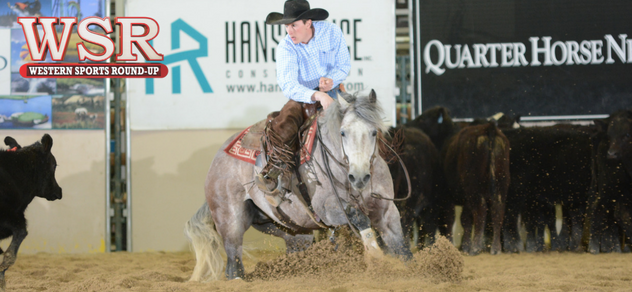 Hired Gun, of Lowrance Horses, working a calf.