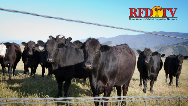 Details have been finalized for U.S. beef to be sent to China.