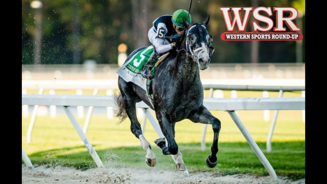 Tapwrit claims Belmont Stakes glory for Todd Pletcher