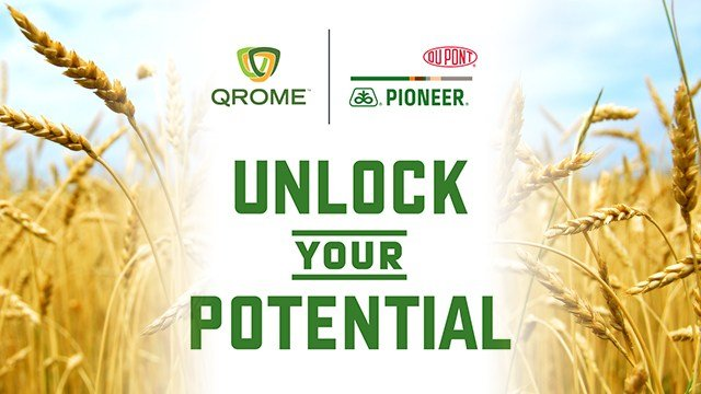 DuPont Pioneer: Unlocking Your Potential