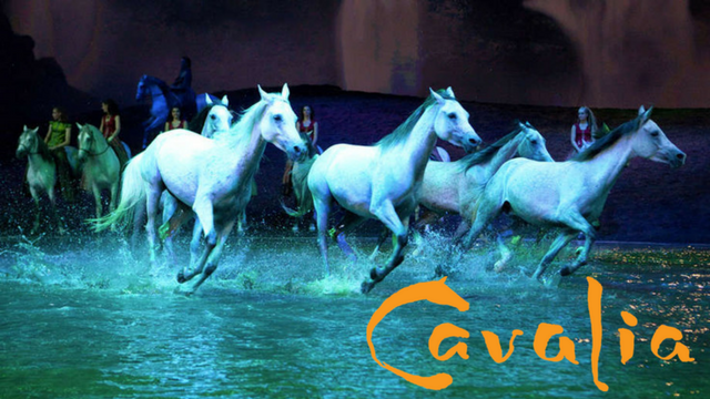 Founder of Cavalia, Normand Latourelle, joined us today to discuss this production that marries equestrian arts, stage arts, and high-tech theatrical effects.