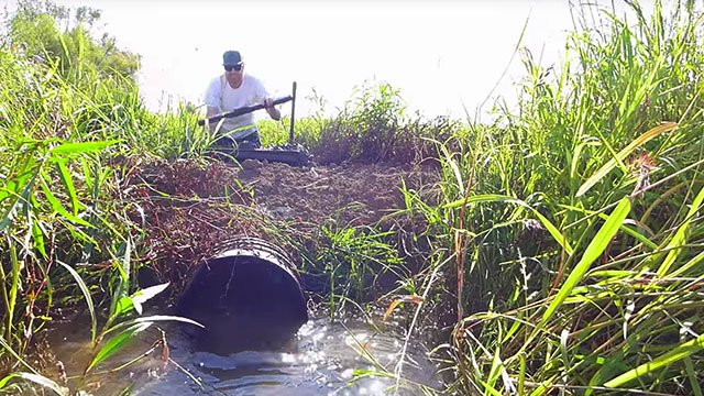 Rice Farming TV's Matt Sligar works to drain a rice field.