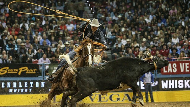 Jake Minor looks for the heel shot during the 2017 Wrangler National Finals Rodeo.