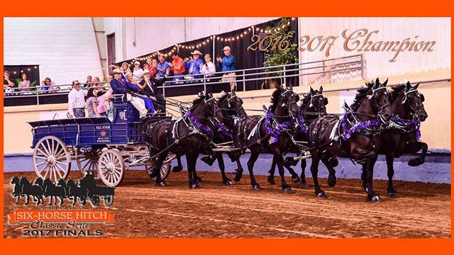 The North American Six Horse Hitch Classic Series Championship Finals