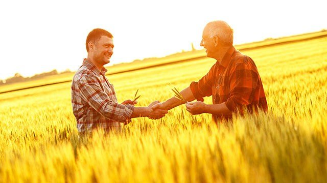 Two farmers shake hands in a wheat field.