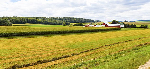 Farm Coach could help improve your operations.