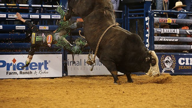 See photos of the bull riding event at THE AMERICAN.