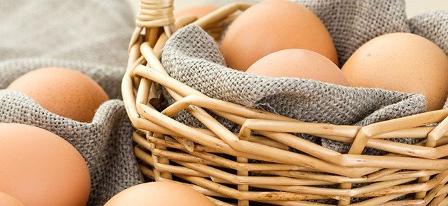 Trends in organic egg production are proving profitable.