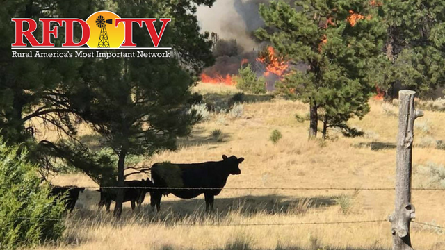 The Lodgepole Complex fire has burned over 270 thousand acres in Montana.