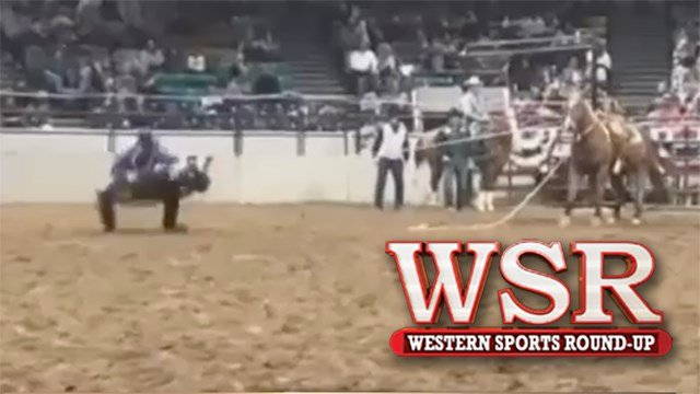 Amy Wilson brings us the updates from The National Western Stock Show