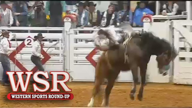 Amy Wilson brings us the final results from the Ft. Worth Stock Shows and Rodeo