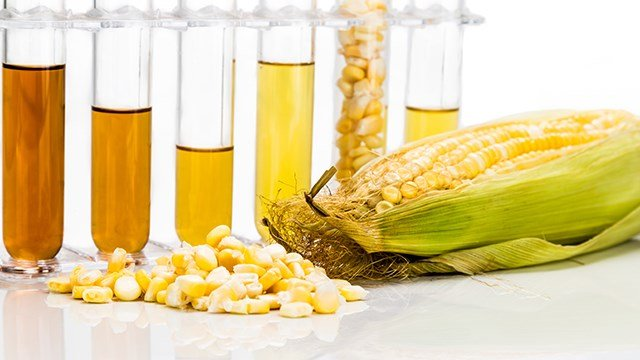 Renewable fuel policy changes could impact corn producers.