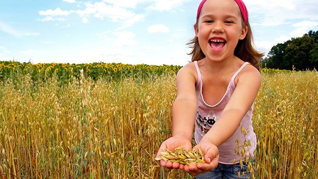 A child with her hands full of grain