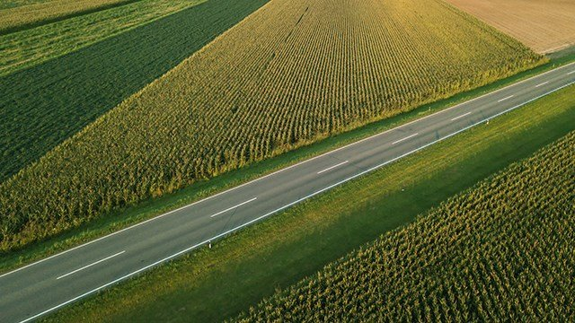 A highway through corn fields