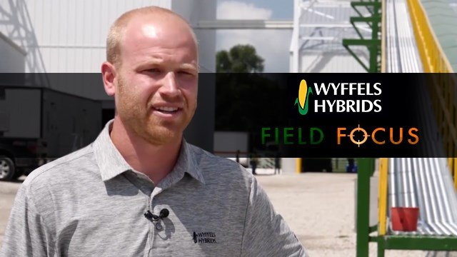 Wyffels Hybrids - Production Manager Jacob Wyffels