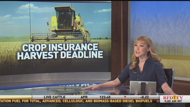 Crop Insurance Deadline