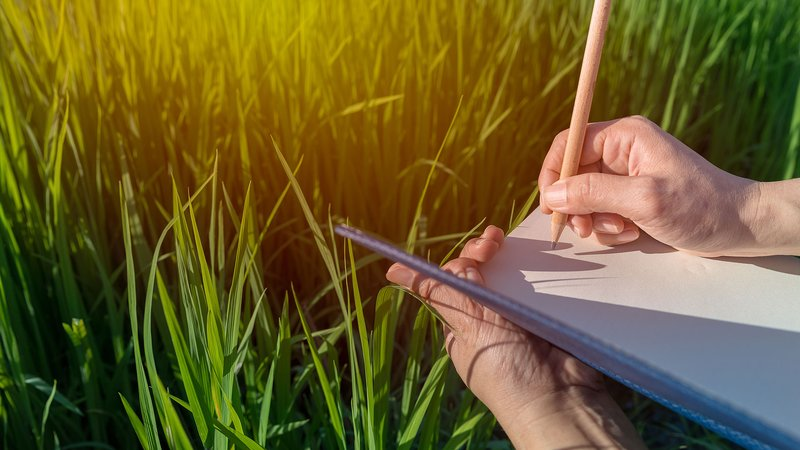 Taking notes in a field.