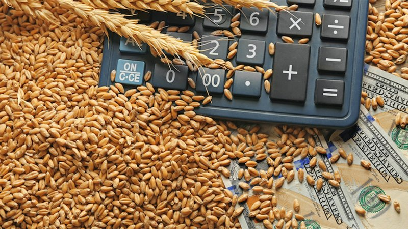 The financial realities of the ag industry.