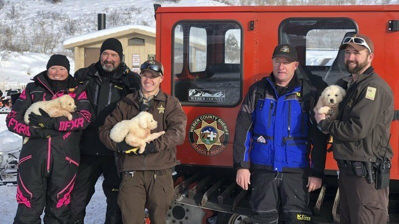 (Weber County Sheriff's Office Search and Rescue via AP)