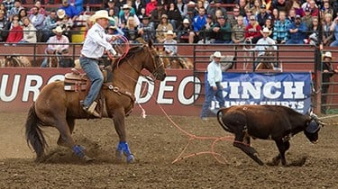 Brady Minor, riding his defending and two-time AQHA Heel Horse of the Year, Rey.